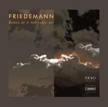 Friedemann Echoes Of A Shattered Sky (1LP 180g Vinyl)