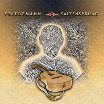 Friedemann Saitensprung (1LP 180g Vinyl)